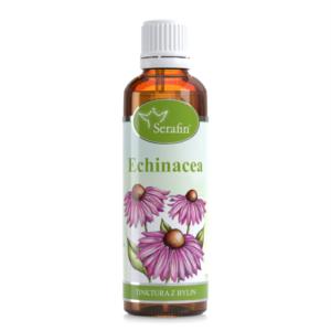 Echinacea- Biocentrum Opál
